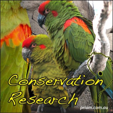Conservation-Researchsm-370x370.jpg