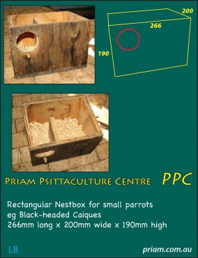 Rectangular nestbox for small parrots.