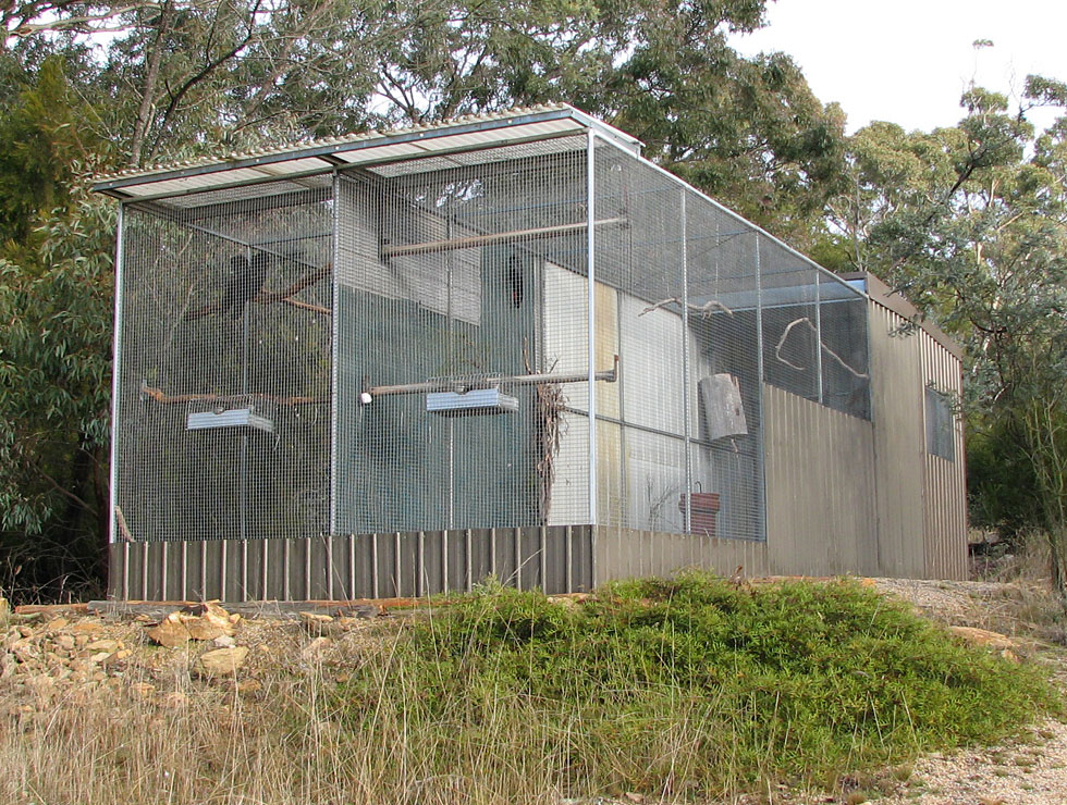 Ppc Facilities Photos From Priam Parrot Breeding
